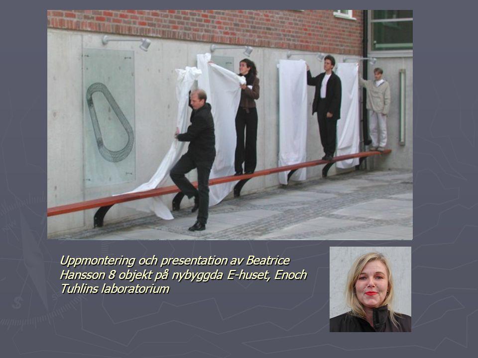 Uppmontering och presentation av Beatrice Hansson 8 objekt på nybyggda E-huset, Enoch Tuhlins laboratorium
