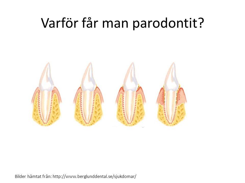 Varför får man parodontit