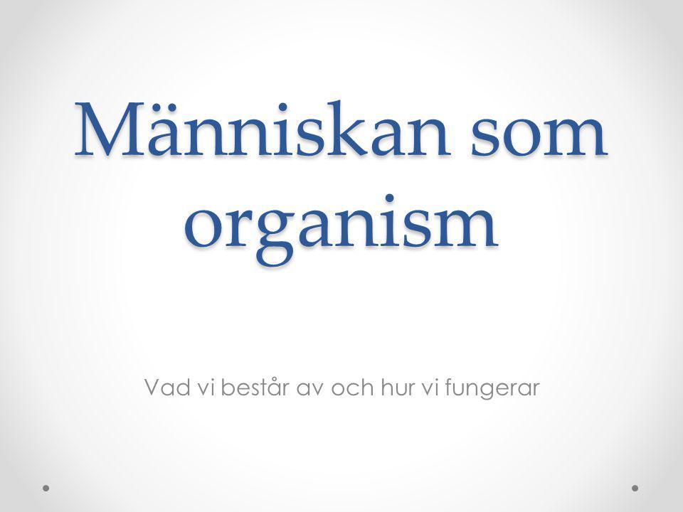 Människan som organism