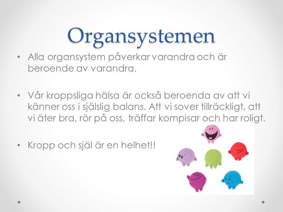 Organsystemen Alla organsystem påverkar varandra och är beroende av varandra.