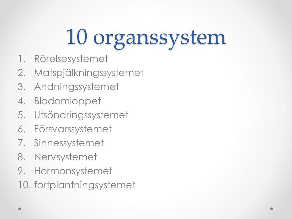 10 organssystem Rörelsesystemet Matspjälkningssystemet