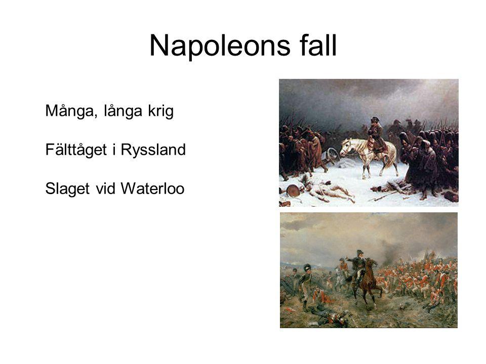 Napoleons fall Många, långa krig Fälttåget i Ryssland