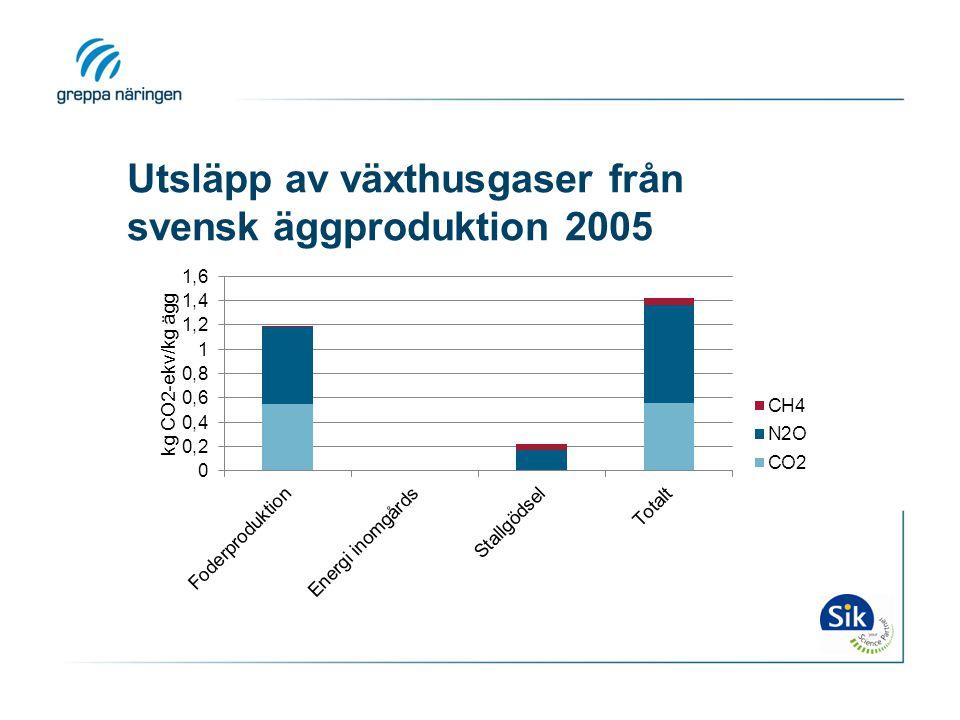 Utsläpp av växthusgaser från svensk äggproduktion 2005