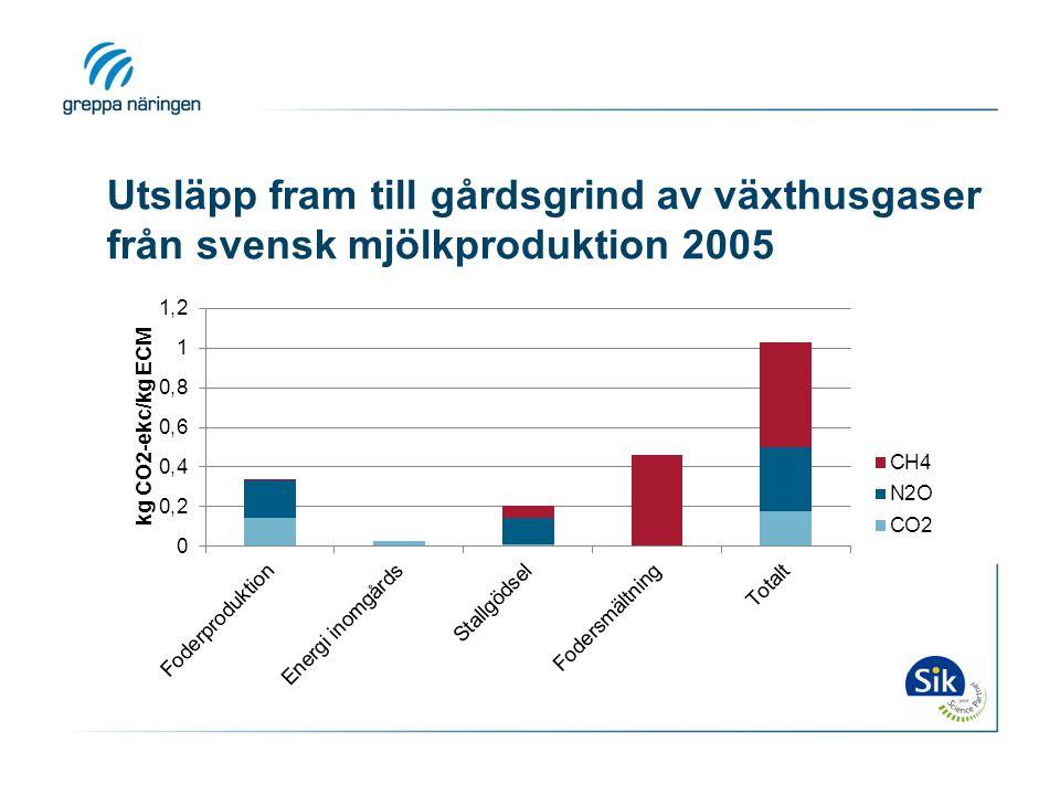 Utsläpp fram till gårdsgrind av växthusgaser från svensk mjölkproduktion 2005
