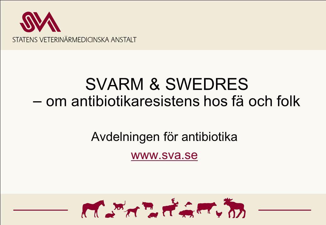 SVARM & SWEDRES – om antibiotikaresistens hos fä och folk