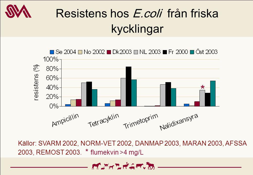 Resistens hos E.coli från friska kycklingar