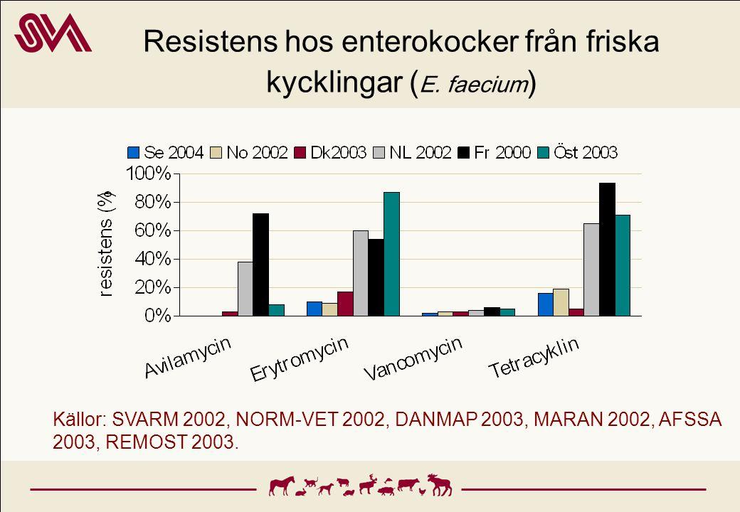 Resistens hos enterokocker från friska kycklingar (E. faecium)