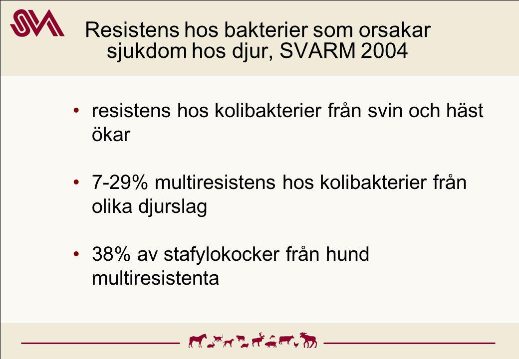 Resistens hos bakterier som orsakar sjukdom hos djur, SVARM 2004