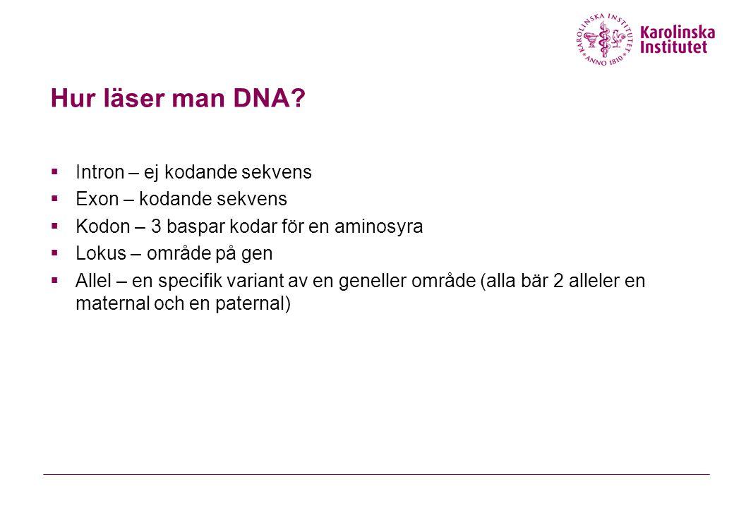 Hur läser man DNA Intron – ej kodande sekvens Exon – kodande sekvens