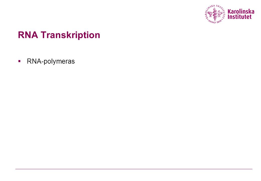 RNA Transkription RNA-polymeras