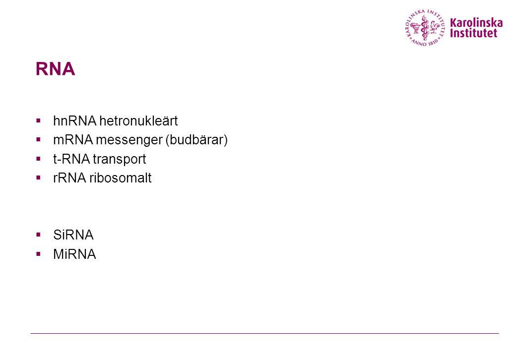 RNA hnRNA hetronukleärt mRNA messenger (budbärar) t-RNA transport