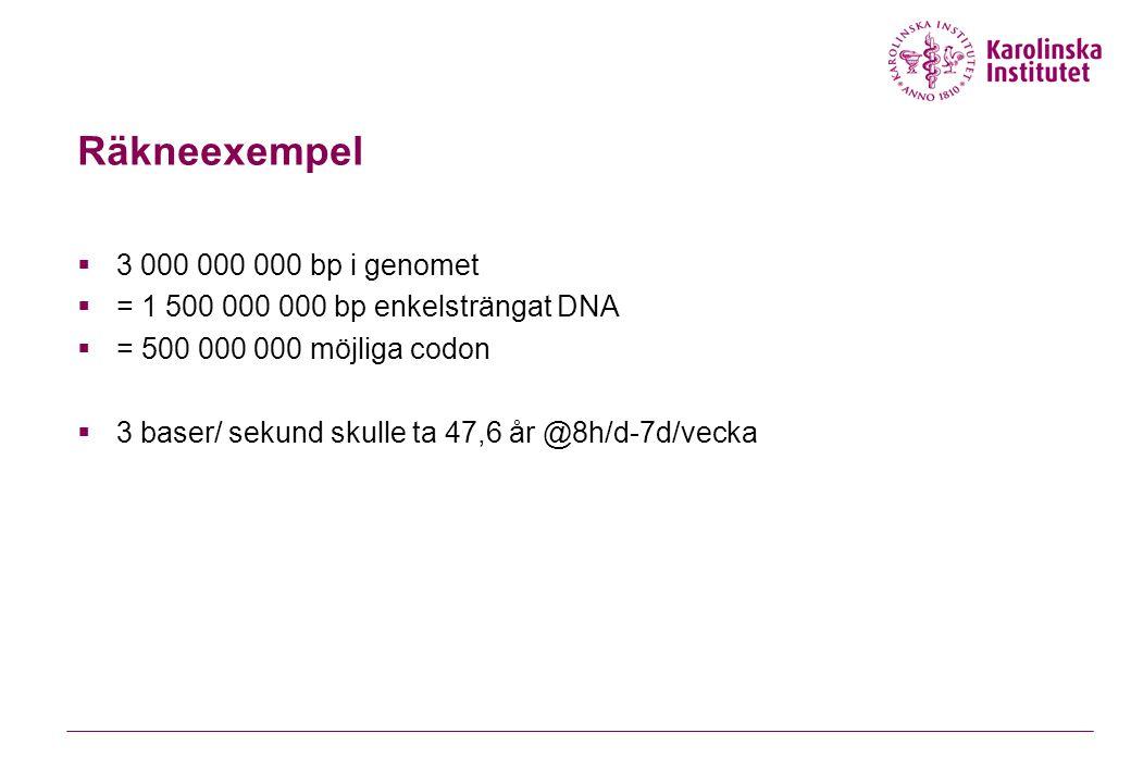 Räkneexempel 3 000 000 000 bp i genomet