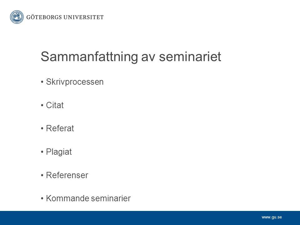 Sammanfattning av seminariet