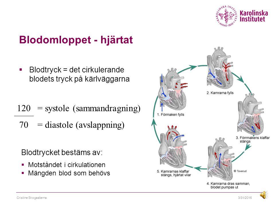 Blodomloppet - hjärtat