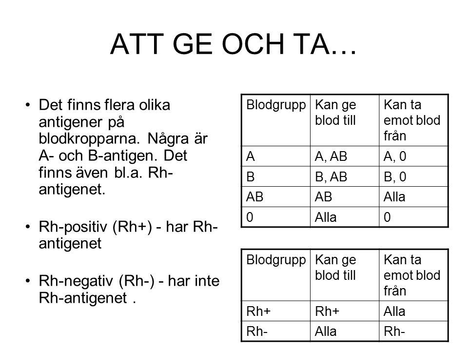 ATT GE OCH TA… Det finns flera olika antigener på blodkropparna. Några är A- och B-antigen. Det finns även bl.a. Rh-antigenet.