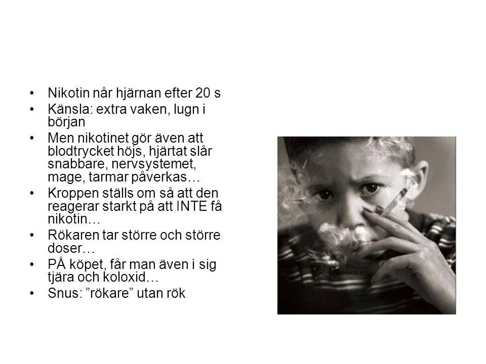 Nikotin når hjärnan efter 20 s