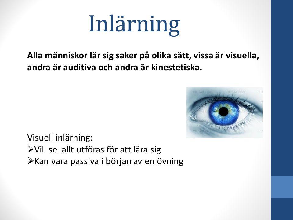 Inlärning Alla människor lär sig saker på olika sätt, vissa är visuella, andra är auditiva och andra är kinestetiska.