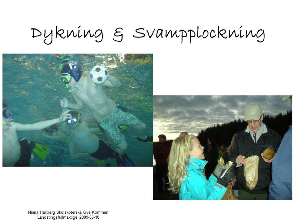 Dykning & Svampplockning