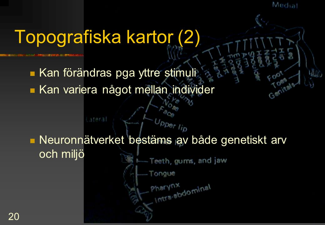 Topografiska kartor (2)