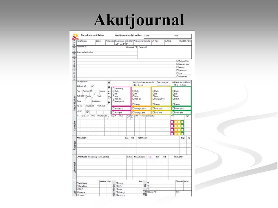 Akutjournal Akutjournal enligt retts-p (se worddokument)