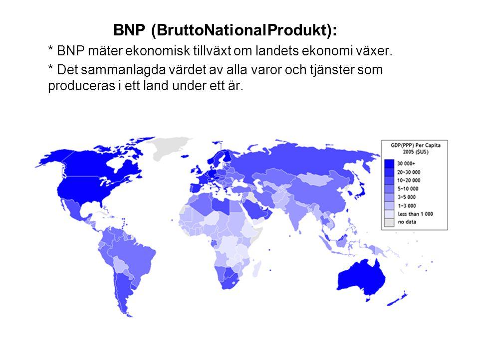 BNP (BruttoNationalProdukt):