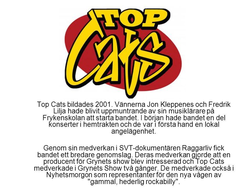 Top Cats bildades 2001. Vännerna Jon Kleppenes och Fredrik Lilja hade blivit uppmuntrande av sin musiklärare på Frykenskolan att starta bandet. I början hade bandet en del konserter i hemtrakten och de var i första hand en lokal angelägenhet.