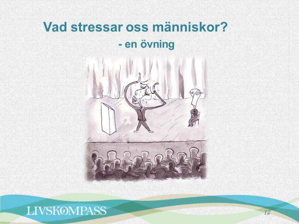 Vad stressar oss människor - en övning