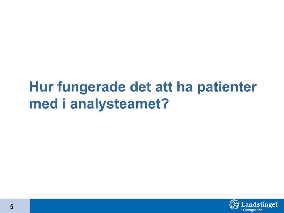 Hur fungerade det att ha patienter med i analysteamet