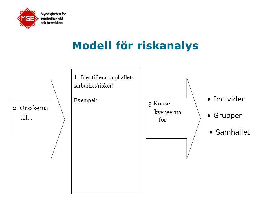 Modell för riskanalys • Individer • Grupper • Samhället