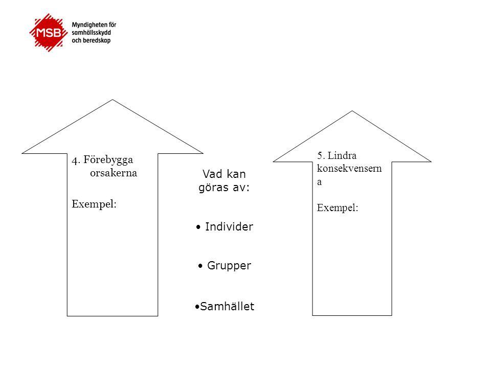 4. Förebygga orsakerna Exempel: 5. Lindra konsekvenserna. Exempel: Vad kan göras av: • Individer.