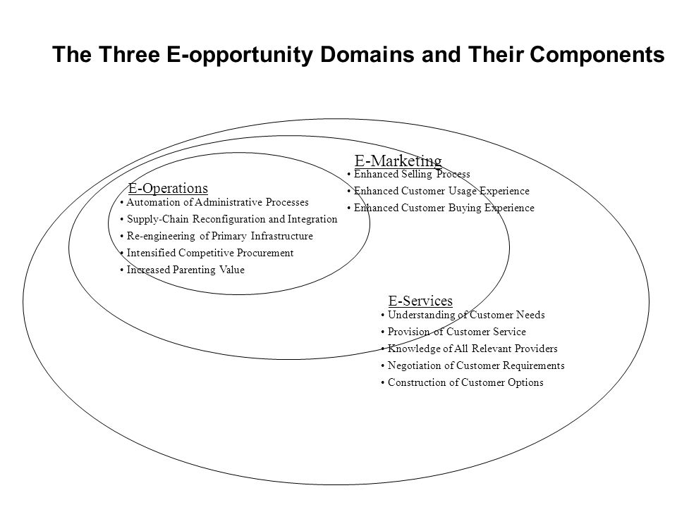 The Three E-opportunity Domains and Their Components