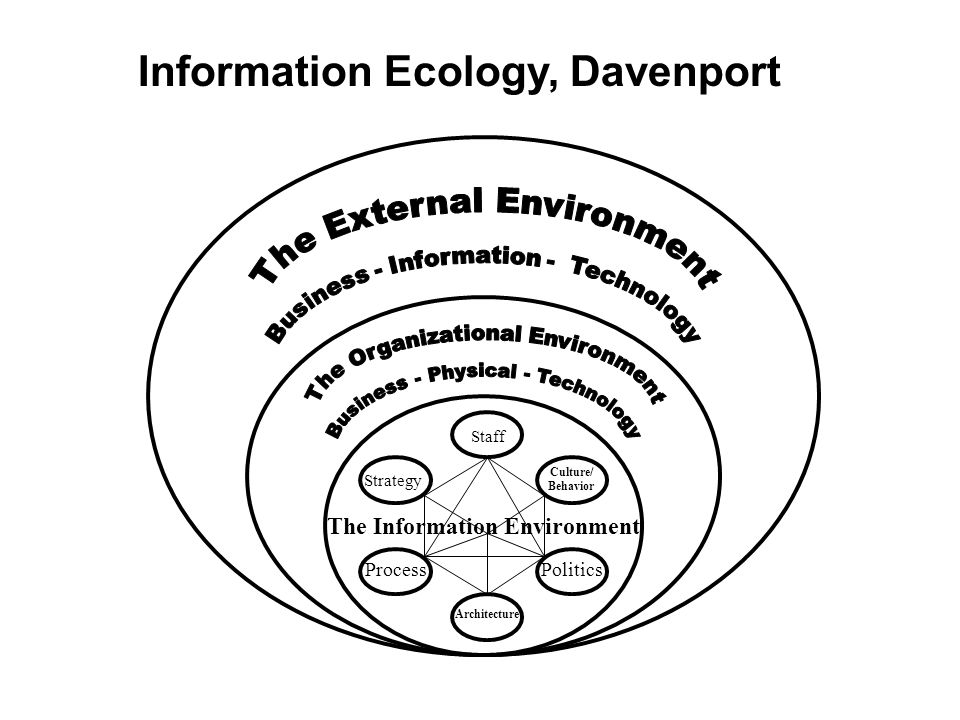 The Information Environment