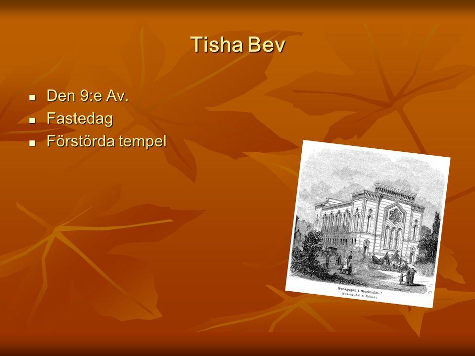 Tisha Bev Den 9:e Av. Fastedag Förstörda tempel