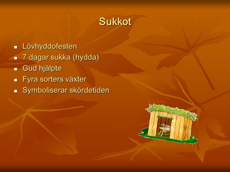 Sukkot Lövhyddofesten 7 dagar sukka (hydda) Gud hjälpte