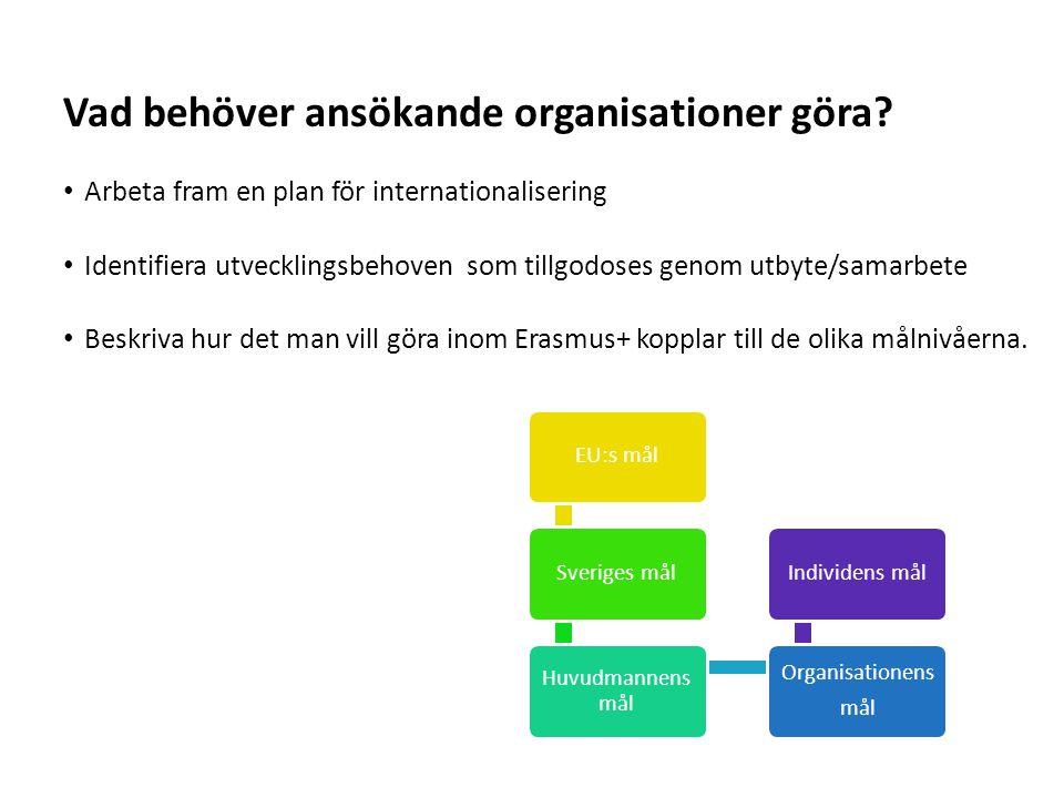 Vad behöver ansökande organisationer göra