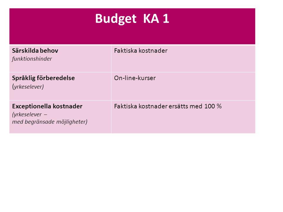 Budget KA 1 Särskilda behov funktionshinder Faktiska kostnader