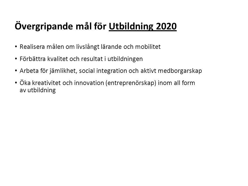 Övergripande mål för Utbildning 2020