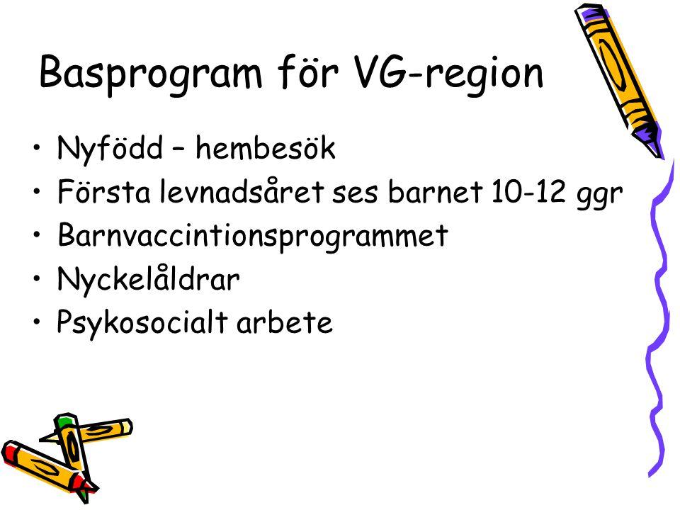 Basprogram för VG-region