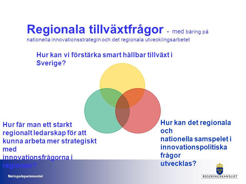 Regionala tillväxtfrågor - med bäring på nationella innovationsstrategin och det regionala utvecklingsarbetet