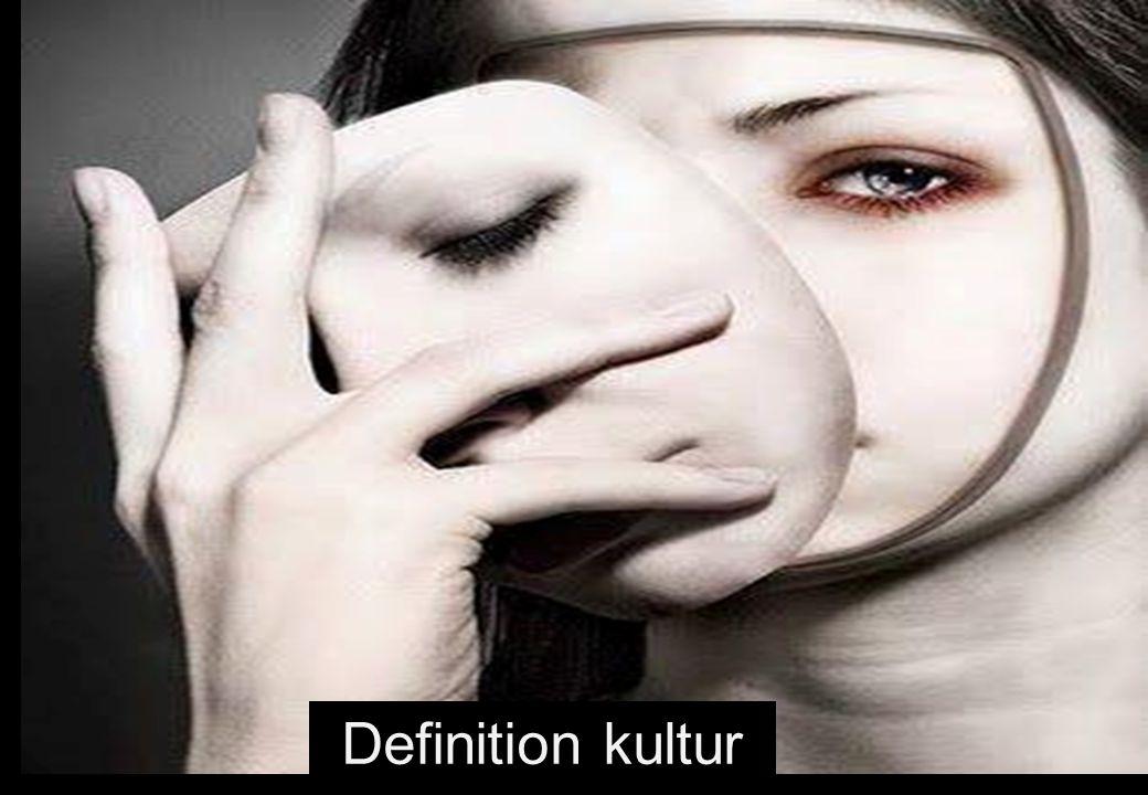 Definition kultur 13