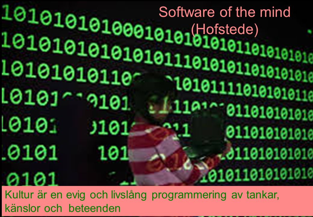 Software of the mind (Hofstede)