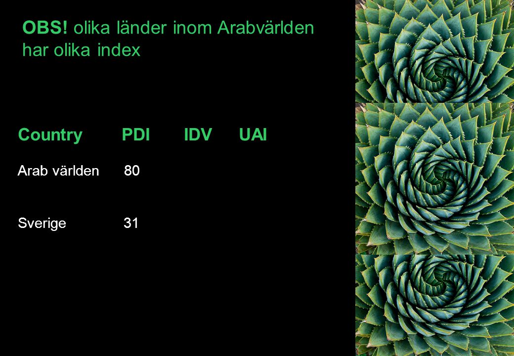 OBS! olika länder inom Arabvärlden har olika index