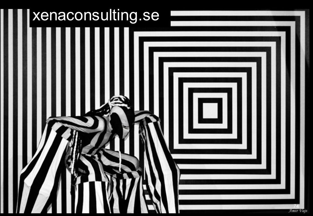 xenaconsulting.se 74 74 74