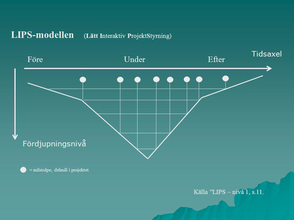 LIPS-modellen (Lätt Interaktiv ProjektStyrning)