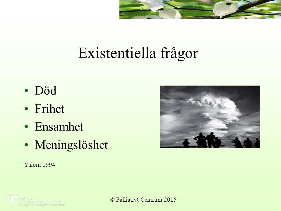 Existentiella frågor Död Frihet Ensamhet Meningslöshet Yalom 1994