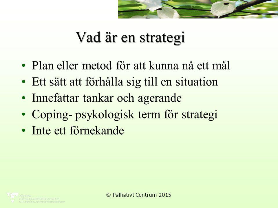 Vad är en strategi Plan eller metod för att kunna nå ett mål