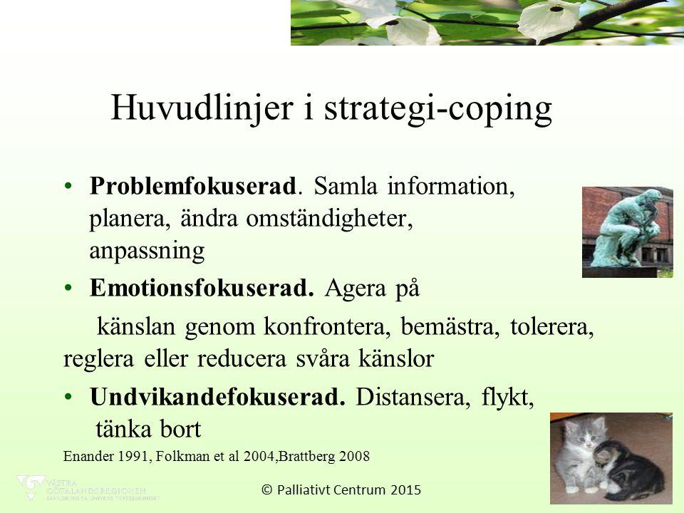 Huvudlinjer i strategi-coping