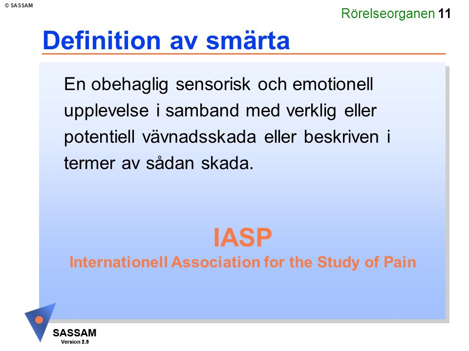 Internationell Association for the Study of Pain