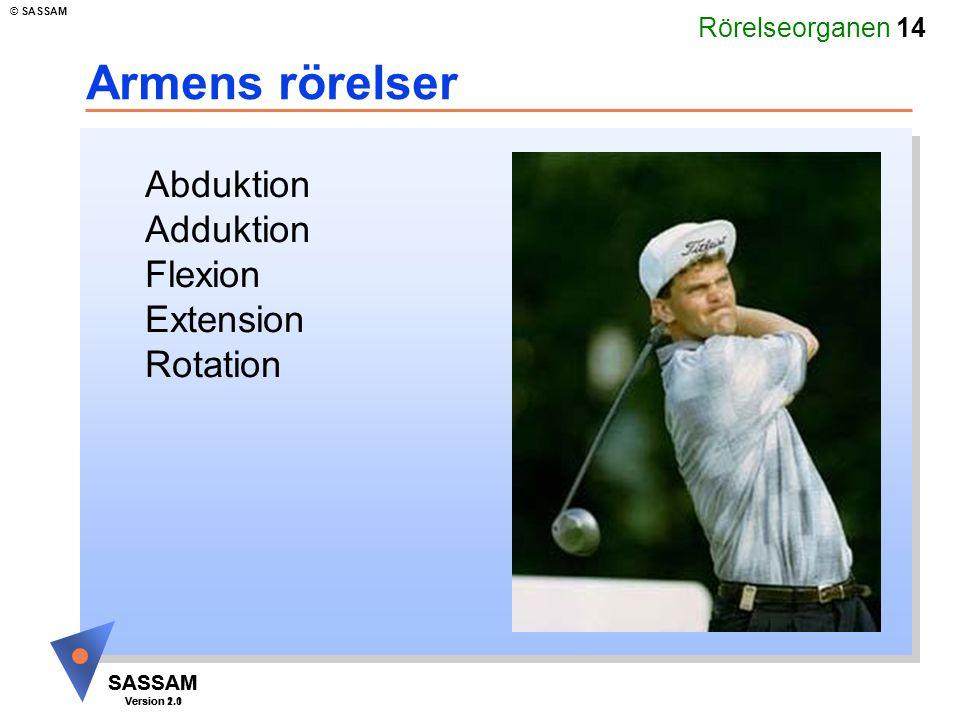 Armens rörelser Abduktion Adduktion Flexion Extension Rotation