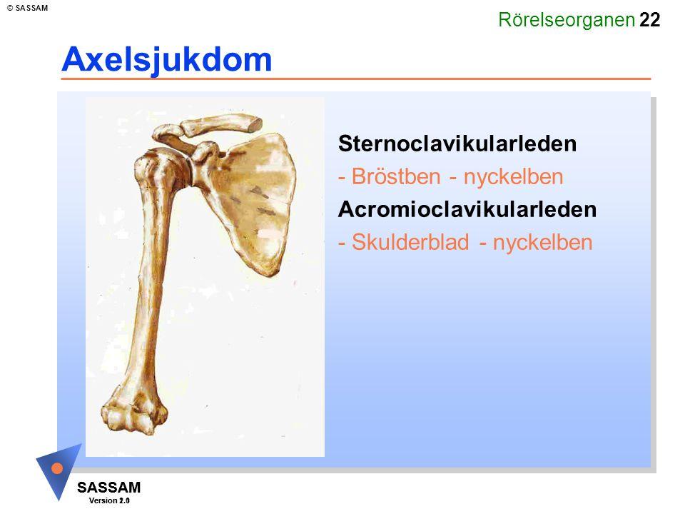 Axelsjukdom Sternoclavikularleden - Bröstben - nyckelben